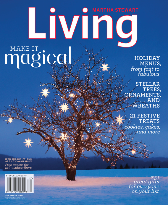 Free Subscription to Martha Stewart Living, All You As Low As $8.46/Year + More Magazine Deals