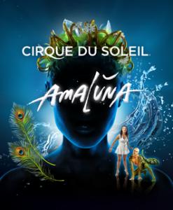 Cirque de Soleil Amaluna review