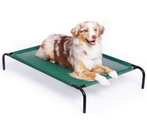 Amazon: AmazonBasics Elevated Cooling Pet Bed from $16.99