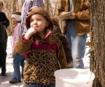 Maple Syruping Events in the Twin Cities