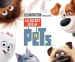 """The Secret Life of Pets"" Blu-ray Combo Pack for $13 (Includes Free Lunchbox)"