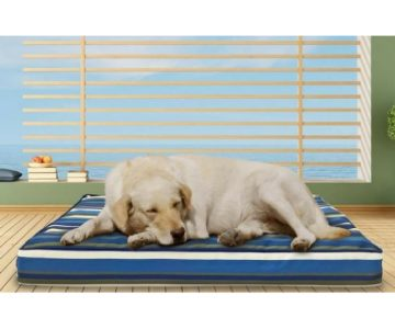 FurHaven Orthopedic Pet Beds from $20 Shipped (Reg. $40-$100)