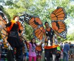 Minneapolis Monarch Festival Saturday Sept 9th