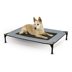 Amazon: K&H Pet Cot on Sale for $14.99 (Lowest Price Ever)