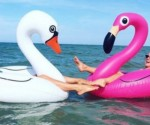 Amazon: Big Mouth Giant Inflatable Flamingo Only $7.51 (Regularly $20) & More