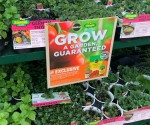 Home Depot Spring Black Friday Sale: Save on Plants, Mulch, Fertilizer, & More!