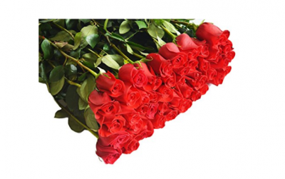 Amazon Prime: 96 Long Stemmed Roses Only $61.16 Shipped (Think Mother's Day!)