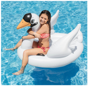 Amazon: Intex Swan Pool Float Only $11.48 (Reg. $19.99)
