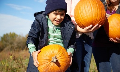 Groupon: Pinehaven Farm Admission Tickets As Low As $19 (Wyoming, MN)